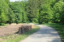 Lokalita nad Javorníkem na jihu Bílých Karpat, která se může dostat na seznam území hájených pro možnou výstavbu přehrady.