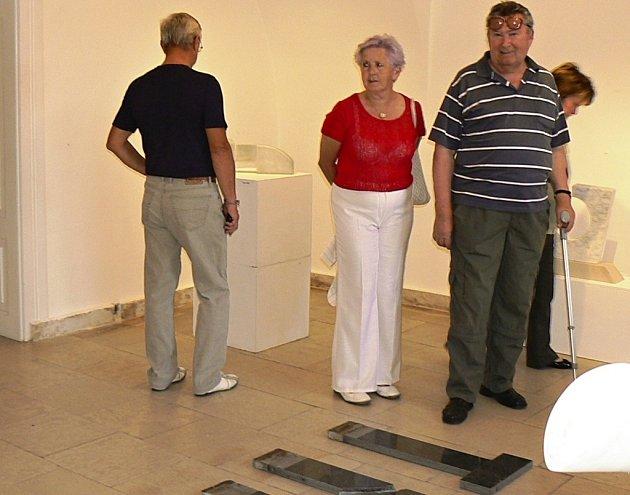 Návštěvníci vernisáže. Ilustrační foto