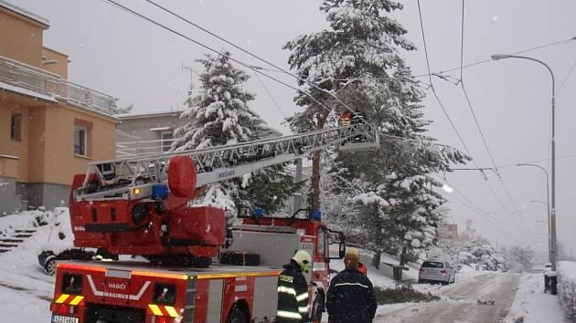 Profesionální hasiči vyjížděli k odstranění popadaných stromů.