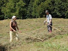 Mladí lidé na Kopanicích pomáhali s kosením louky.