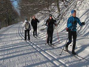 Běžecká stopa od Kamenné búdy na Javořinu. Ilustrační foto.