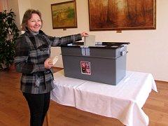 Obecní volby v Sušicích