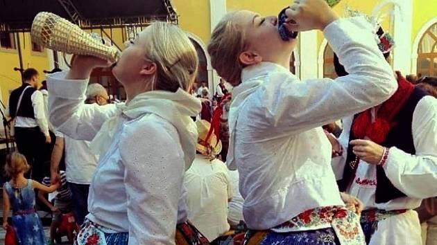 Vítězná fotografie soutěže Foťte slavnosti vína z roku 2016.