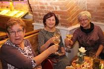Pro Bělinku vydražili v Galerii slováckých vín přes 17 tisíc korun