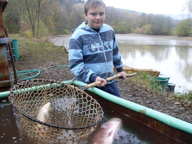 S týdenním zpožděním se v sobotu 4. listopadu pustili rybáři z Březové do výlovu obecního rybníku. Na břehu byly k mání také uzené makrely, klobásy a svařák.