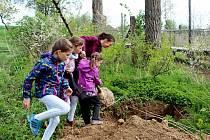 Vytvoření krajinných prvků a zabránění větrným a vodním erozím je hlavním smyslem výsadby izolační zeleně.