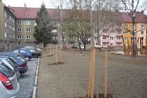 Malé stromky, které mají nahradit vykácenou zeleň, se už objevily na mnoha místech Uherského Hradiště, například i ve čtvrti V Tůních