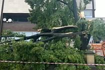 Následky bouře, která se 27. července na večer prohnala Uherským Brodem.