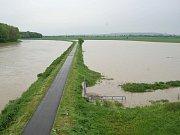 Morava, pohledy od Moravního mostu po jez. Úterý 18. května, okolo poledne.