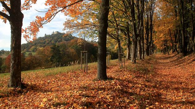 Pohled na hrad Buchlov.