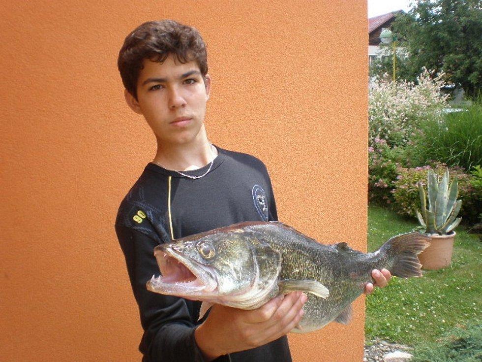 Soutěžní číslo 110 – Ivan Arsene, candát, 75 cm, nevážen