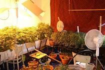 Policie odhalila pěstírnu marihuany a varnu pervitinu.
