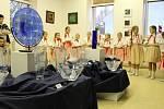 V Bojkovicích byla zahájena výstava Sklo a obrazy.