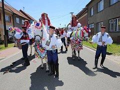 Obdobou moravské jízdy králů (na snímku) jsou na jihu Čech letniční svátky. Na Budějovicku chodil průvod, kde byli král a králka oblečeni do oděvu z kůry, později pak do bílých šatů se stuhami a květinami.
