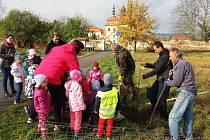 Děti zvelehradské mateřinky jablůňky vroce 2019 sadily a nyní je kresbičkami ozdobily.