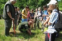 Lesáci ukázali dětem, jak se vysazují na pasekách malé stromečky.
