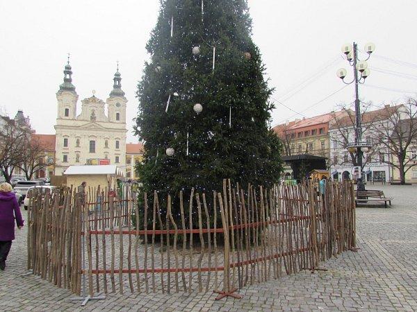 Svůj vánoční strom má od soboty 5.prosince slavnostně rozsvíceno také Uherské Hradiště.