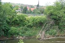 Řeka Olšava. Ilustrační foto
