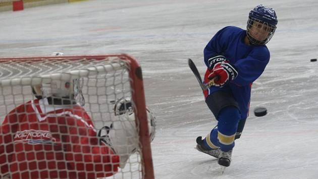 Týdenní kemp absolvují nadějní hokejisté z Česka i zahraničí pod vedení zkušených trenérů jedné z nejstarších hokejových škola legendárního trenéra Luďka Bukače.