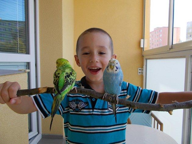 1. ADAM. Krotitel papoušků