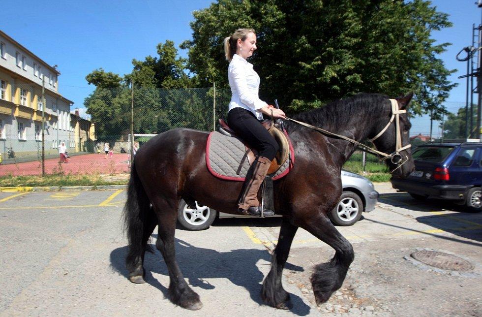 Anna Pospíchalová na koni Toby.