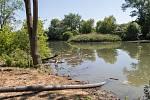Revitalizace slepého ramene řeky Moravy s názvem Vytrávené na jaře 2020.