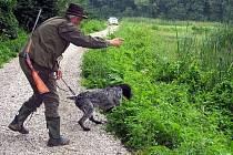 Po jednom roce a dnu se v sobotu vrátily do areálu rybníků v mysliveckém sdružení Bukovina Popovice speciální zkoušky z vodní práce ohařů.