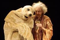 Poslední focená zkouška představení Harold a Maude před generálkou.