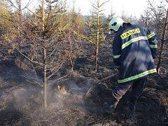 Při pálení odpadu v Uherském Ostrohu se požár rozšířil do blízkého lesa.