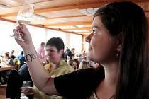 BYLO PLNO. Sály Agra Zlechov se v sobotu zaplnily vínomilci, kteří mohli vychutnávat některý z 325 vín, ale také 53 vzorků sýrů a klobásek.