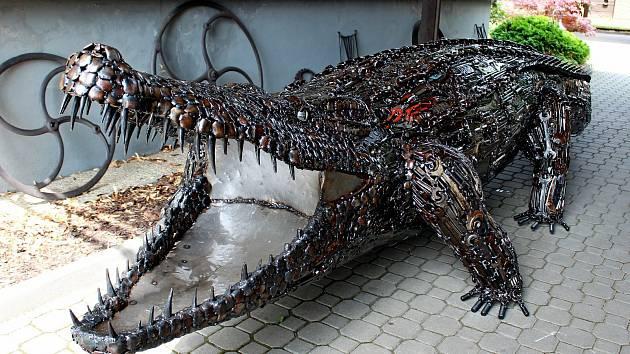 Expozice ve staroměstské Kovozoo má přírůstek.  Je jím krokodýl mořský pojmenovaný Michal.