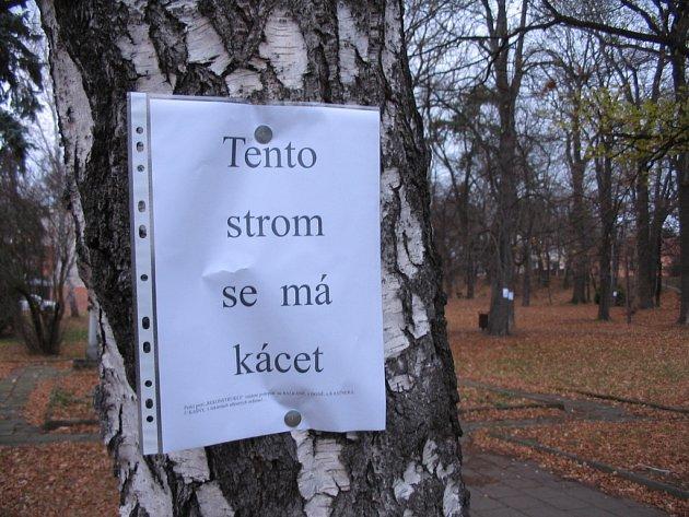Původní verze projektu počítala s tím, že v Tyršových sadech padne 223 stromů.