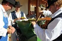 Nedělní lisování vína se tradičně konalo na buchlovickém náměstí.