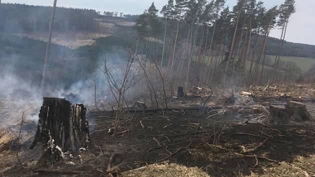 Při požáru lesního porostu mezi Rudimovem a Pitínem musel zasahovat vrtulník a dvanáct hasičských jednotek.