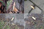 Muž střílel po labutích z plynové pistole.