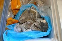 Zkažené rybí maso z prodejny v Malešicích.