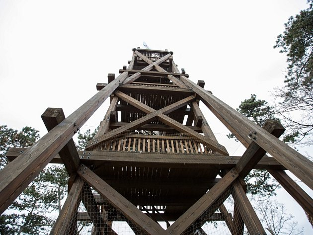Rozhledna Obora je umístěna na nejvyšším bodě v zoo, poblíž výběhu bizonů a měří 18,5 m.