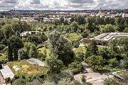Fotografie k výročí 15. let od ničivých povodní 2002 v Praze. Snímek je z 9. srpna z pražské zoologické zahrady. Na snímku celkový pohled na zahradu.