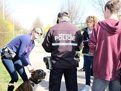 Součástí kampaně Chceme tu mít čisto! jsou i veřejné procházky Prahou 14 s okrskáři městské policie se zaměřením na běžné kontroly plnění povinností majitelů psů.