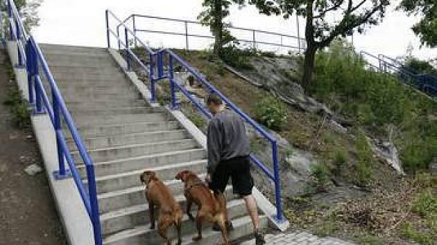 Přístup na most vedoucí ze Stromovky na Císařský ostrov není příliš vhodný.