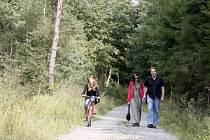 Idyla v Klánovickém lese.