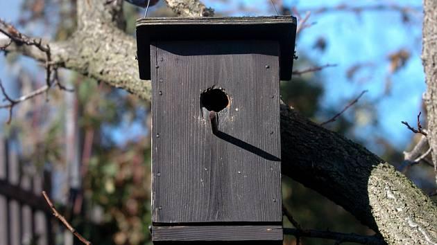 Ptačí budka. Ilustrační foto.