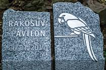 Základní stavební kámen nového pavilonu exotických ptáků v pražské zoo - Rákosova pavilonu.