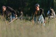 Kosení trávy se letos koná popáté