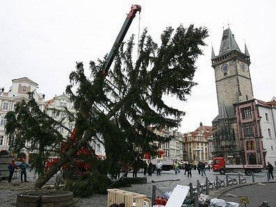 Osudným se stal Britovi vánoční strom na Staroměstském náměstí.