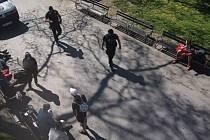 Strážníci městské policie zasahovali ve Vrchlického sadech.