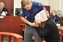 Sedmadvacet loupeží spáchal podle obžaloby po celé republice, naopak jednu jedinou podle vlastního přiznání. A nic víc než skutek, při kterém ho zadržel náhodný kolemjdoucí, nemá na svědomí.