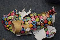 Celníci zadrželi na pražském letišti 24 kilogramů pašované slonoviny.