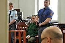 Z vraždy provedené obzvlášť trýznivým způsobem se před Městským soudem v Praze zpovídal Jaromír Navrátil.
