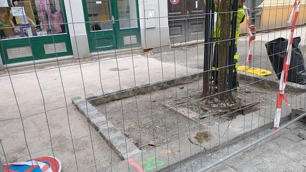 Rekonstrukce Jaselské ulice v Praze 6 se stala předmětem kritiky kvůli necitlivému přístupu ke stromům.